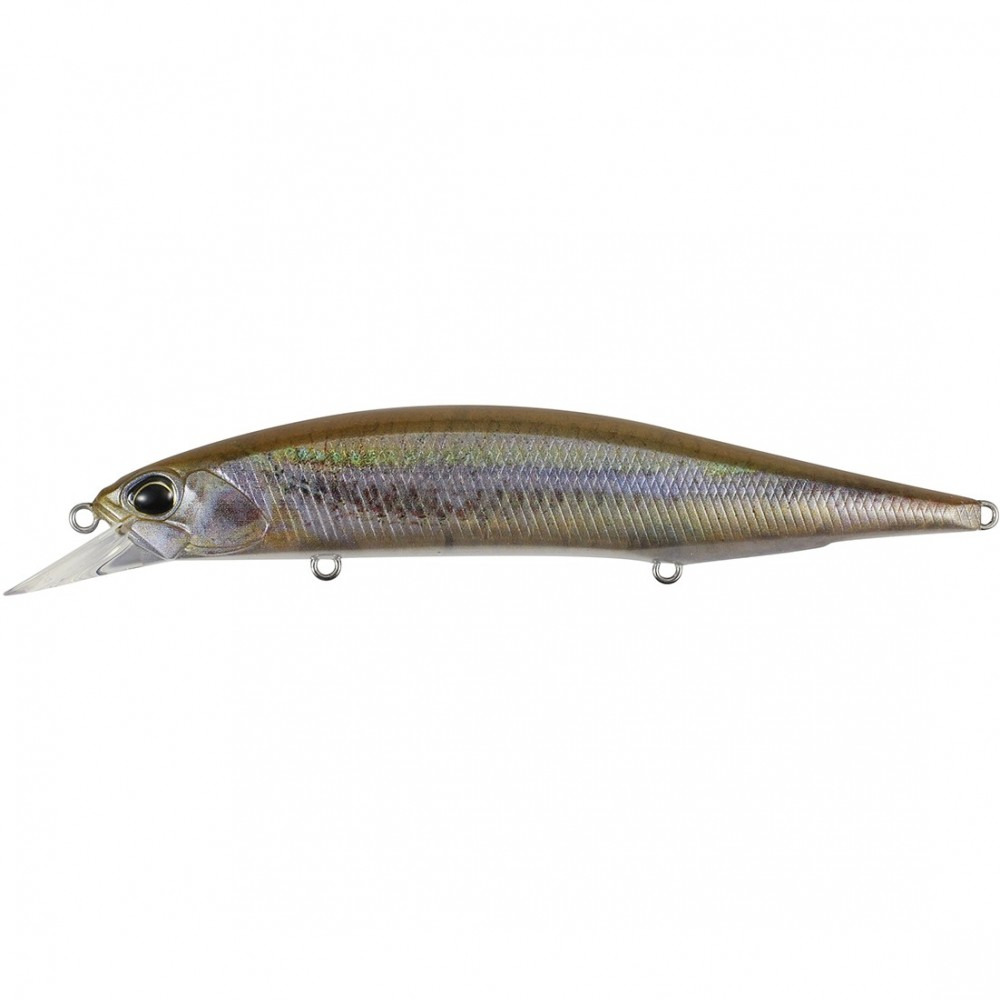 Duo Great Lakes Seris - Emerald Shiner ND