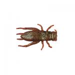 Berkley Gulp Cricket