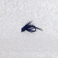Hair Tail Tungsten Ice Flies-Black
